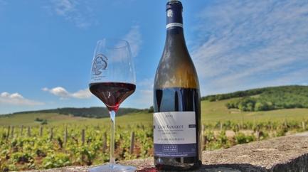 Une journée en Bourgogne